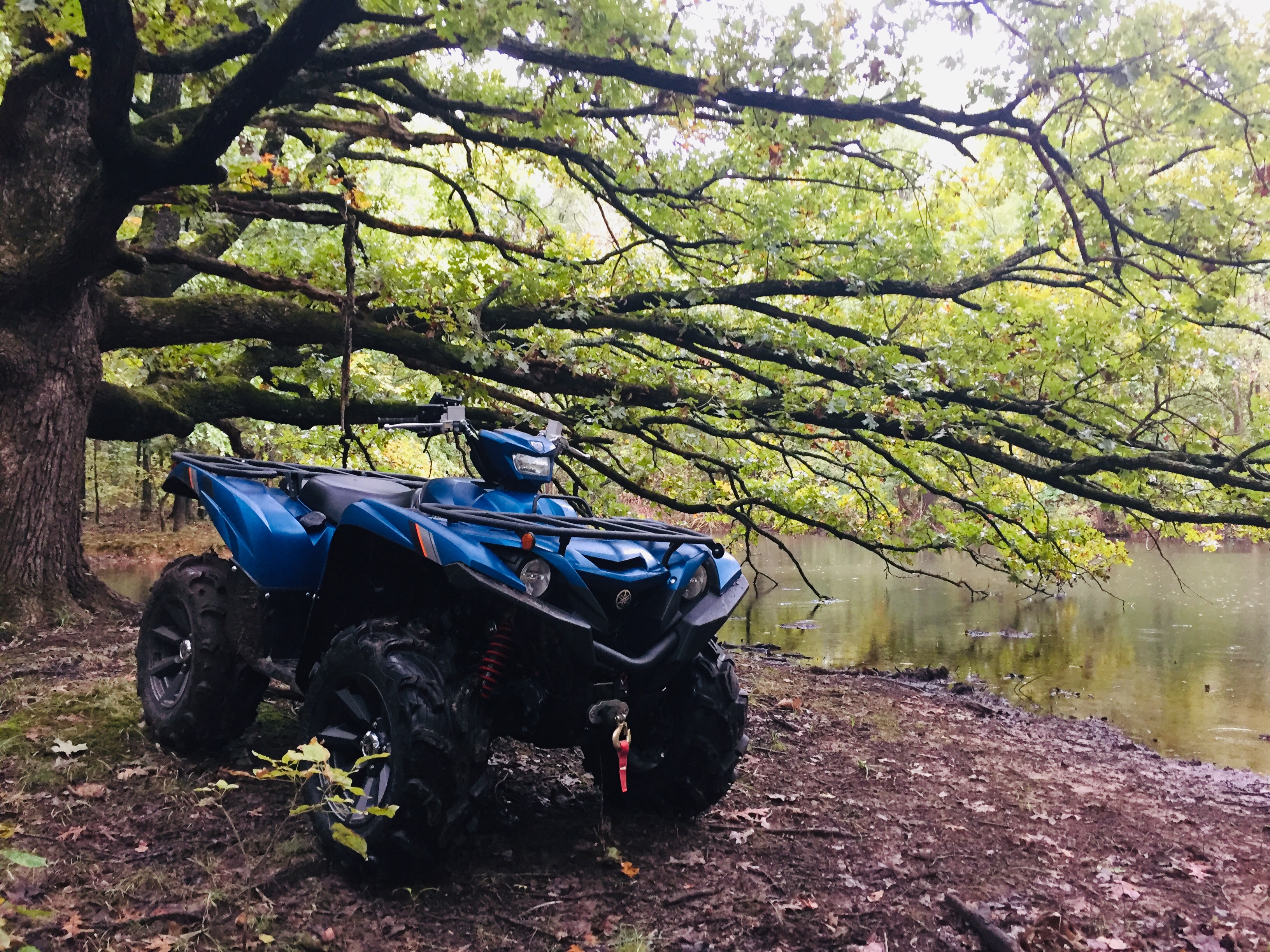2019 Grizzly SE Backcountry Blue - Yamaha Grizzly ATV Forum