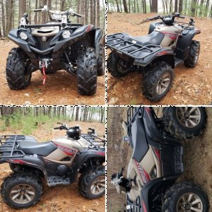 XT-R grizzly