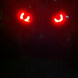 Red leds for the headlights