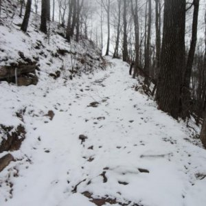 Climb to Rockhouse on trail 40, (old 28).  Had to turn around due to a tree down.